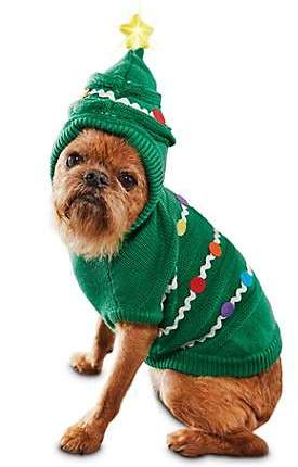 Spirit Day Friday, December 7 - Festive Wear Day